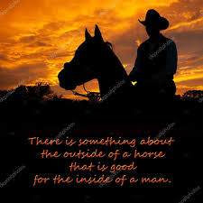 there is something about the outside of a horse that is good for