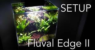 Fluval Edge Aquascape Aquascaping Aquarium Setup Fluval Edge Ii Aquarium Pinterest