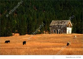 Old Ranch House Old Ranch House Stock Image I1477400 At Featurepics
