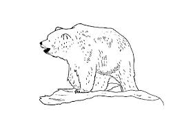 bear coloring pages images care bears coloring sheets