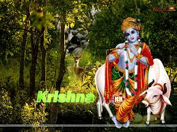 computer wallpaper krishna iskcon wallpapers wallpapersafari