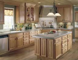 ideas for kitchen designs design ideas on interior decor home with new kitchen design ideas