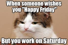 Working On Saturday Meme - image tagged in friday work disappointed cat imgflip