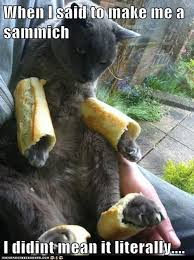 Make Me A Sammich Meme - when i said to make me a sammich lolcats lol cat memes funny