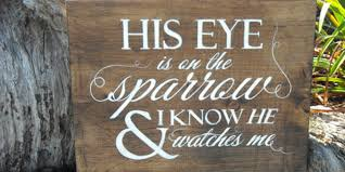 his eye is on the sparrow of wisdom homeschool