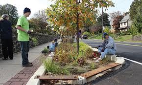 Urban Gardening Philadelphia - stormwater street trees philadelphia water department