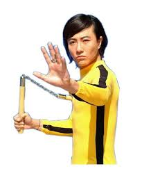 bruce yellow jumpsuit bruce yellow jumpsuit bruce costume the best