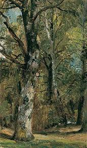 218 best artist shishkin images on landscape