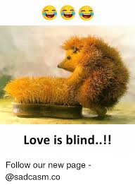 New Love Memes - love is blind follow our new page love meme on awwmemes com
