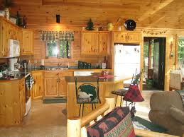 Plans For Cabins by Kitchen Cabinets For Cabins A Simple Approach For Kitchen