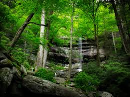 Tennessee Scenery images The 10 best waterfall hikes in tennessee jpg