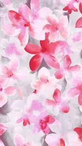 flower wallpaper for nokia x flower lg g2 wallpapers hd 97 lg g2 wallpapers lg wallpapers