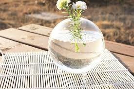 Miniature Flower Vases Miniature Footed Bud Vase Container Marimo Terrarium Japanese