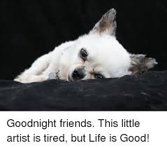 Life Is Good Meme - goodnight friends this little artist is tired but life is good