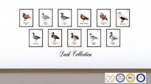 Duck Home Decor Mandarin Duck Bird Gifts Home Decor Wall Art Decoration Livingroom