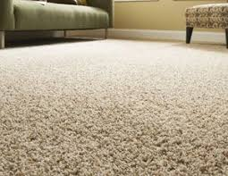 best 25 carpet types ideas on types of carpet rugs