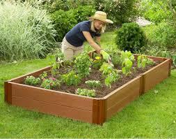 Gardening Tips For Summer - summer gardening safety tips engledow group