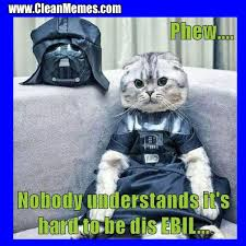 Funny Memes Clean - cat memes clean memes the best the most online page 2 truly