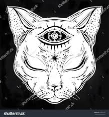 black cat head portrait moon three stock vector 479830135