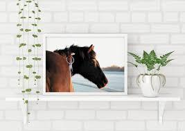 Equine Home Decor by Horse Art Print Horse Beach Poster Horse Wall Art Boho