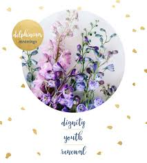 delphinium flower delphinium meaning and symbolism ftd