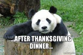 after thanksgiving dinner confession panda make a meme
