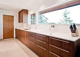 Midcentury Modern Kitchens - top cabinet framing ideas kitchen design 2011 retro mid century