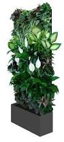living wall for small space gardens living walls small spaces