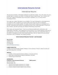 Resume Examples For Summer Jobs by Examples Of Resumes 81 Amusing Professional Resume Format Job