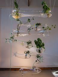 hydroponic herb garden u2013 ken rinaldo
