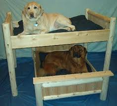 Bunk Bed For Dogs Luxury Log Dog Beds And Other Log Furniture Custom Crafted Pet