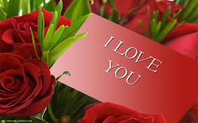wallpaper flower red rose red roses hd wallpaper flowers wallpapers clip art library