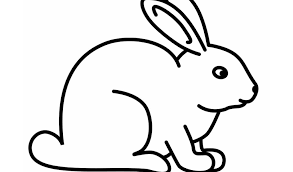 rabbit coloring timykids