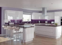 purple kitchen decorating ideas gloss purple kitchen cabinets quicua com