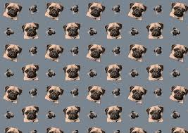 pug wrapping paper wip pug patterns on behance