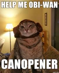 Princess Leia Meme - princess leia cat pun meme on imgur