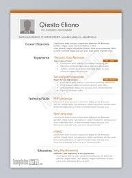 Microsoft Word Templates For Resumes Programmer Cv Template Template Cv Infografica Gratis