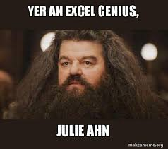 What Is A Meme Exle - yer an excel genius julie ahn hagrid i should not have said