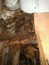 Rotten Bathroom Floor - replace rotten bathroom joists and fix leaking taps bathroom