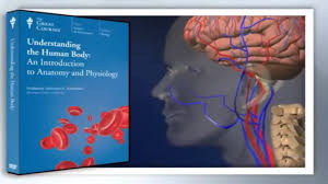 Human Anatomy And Physiology Courses Online Understanding The Human Body An Introduction To Anatomy And