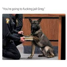 Funny Swearing Memes - hope you like the color orange memebase funny memes