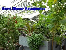 help with aquaponics