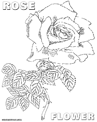 rose coloring pages coloring pages to download and print