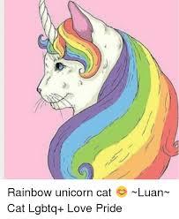 Unicorn Rainbow Meme - rainbow unicorn cat luan cat lgbtq love pride meme on me me