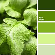 color scheme for interior design color palette ideas