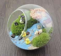 flat base terrarium glass ball