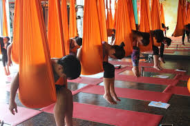aerial yoga teacher trainings