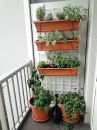 balcony garden ideas vegetables avivancos com