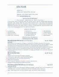 professional resume templates word 13 luxury professional resume templates word resume sle