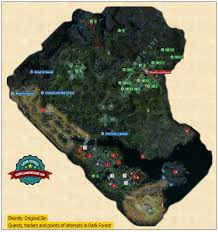 The Forest Map Dark Forest Dark Forest Maps Divinity Original Sin Game